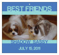 Big Square Pets Friend Favor Tag 3.5x3.25