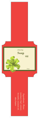 Energize Soap Band Square Labels