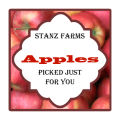 Apple Dumpling Large Square Food & Craft Label