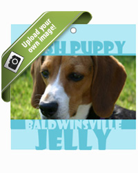 Hush Puppy Photo Food and Craft Hang Tags
