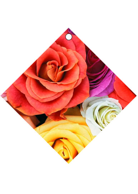 Just Photo Valentine Hang Tags