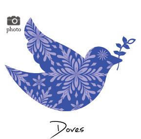 Christmas Dove Family Cards
