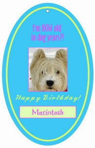 Dog Birthday Hang Tags
