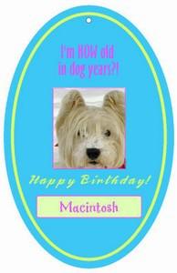 Dog Birthday Hang Tags