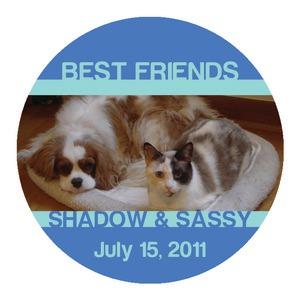 Friend Pets Coasters