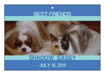 Friend Pets Favor Tag