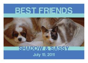 Friend Pets Labels