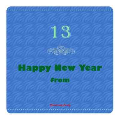 New Year Family Coasters