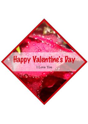 Photo Label Valentine Labels
