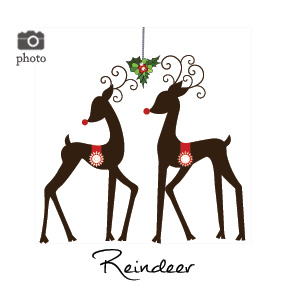 Christmas Reindeer and Rudolph Family Cards