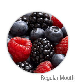 Mixed Berry Jelly Regular Mouth Ball Jar Topper Insert