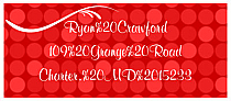 Christmas Happy New Year Address Labels