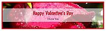 Photo Valentine Water bottle Labels 7x1.875