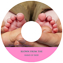 CD Baby Photo Labels With Text